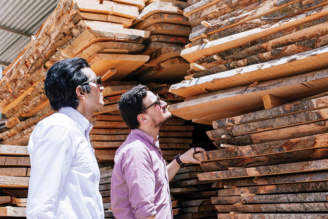 Le bois, une matière noble pour se protéger les yeux